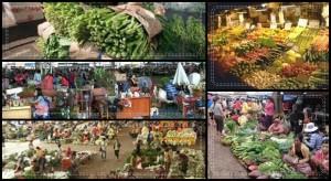 ตลาดเกษตรกรรมไทยวันนี้