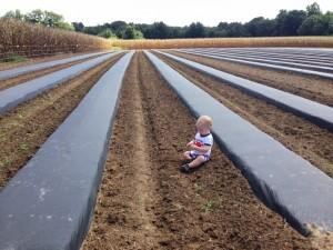 เทคโนโลยีการเกษตรต่างแดน