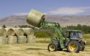 เทคโนโลยีการเกษตร