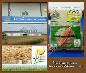 โรงสีข้าวพระราชทาน_ฟาร์มไทยแลนด์