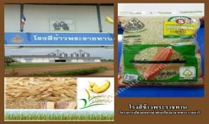โรงสีข้าวพระราชทาน_farmthailand.com