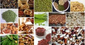 การผลิตเมล็ดพันธุ์พืชของไทย มีอยู่ 2 ลักษณะ