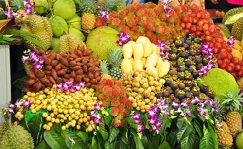 สนับสนุนเกษตรกรจำหน่ายผลไม้ผ่านระบบเครือข่าย