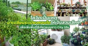 บทความเปลี่ยนระเบียงคอนโดเป็นสวน_SEP2021